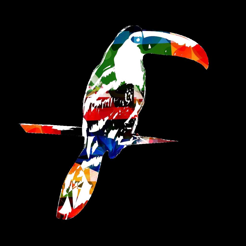Logo Nomad Barista