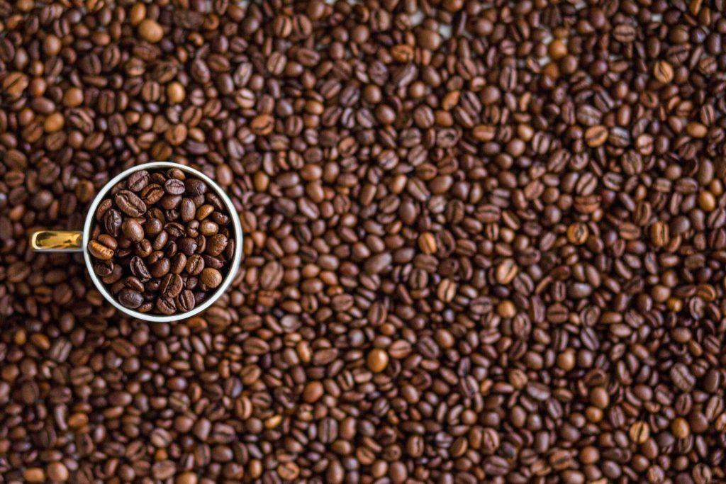 Grains de café sans défaut