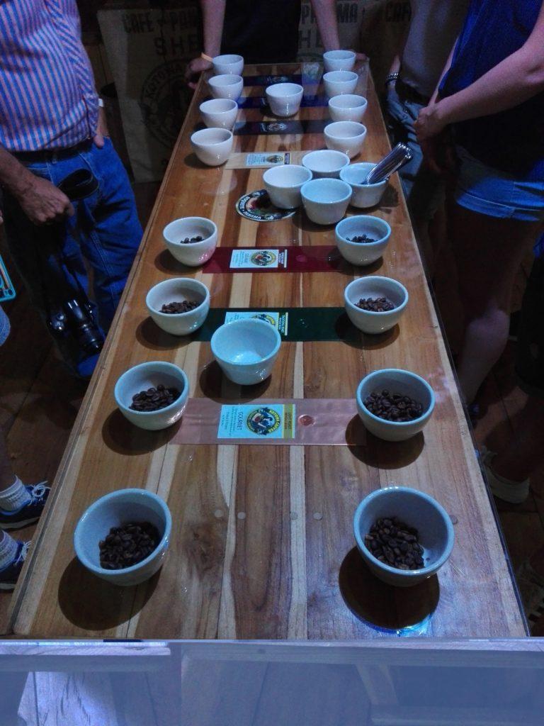 cupping café : table avec plusieurs cafés